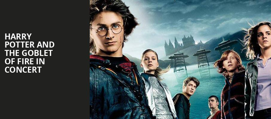 harry potter and the goblet of fire game review